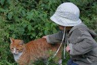 Leander und seine Jagdkatze