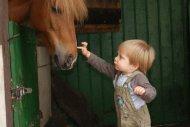 """Leander und das Pony """"Loni"""" (daher heißen jetzt bei Leander alle Pferde """"Loli"""")"""