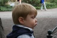 Interesse für die Tierwelt im Zoo