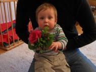 Extra früh aufgestanden, um der weltbesten Mami Blumen zu holen…