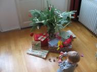 """Der """"Weihnachtsbaum"""" vor der Bescherung"""